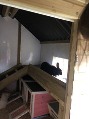 The Warren Lodge Rabbit Shed - With Balcony and Ramp - Insulated