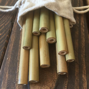 Reusable 100% Natural Bamboo Drinking Straws | 10 Pack| Includes Cleaning Brush