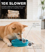 Load image into Gallery viewer, Outward Hound Slow Feeder Dog Bowl