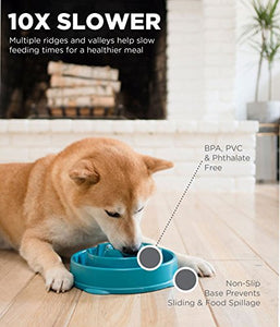 Outward Hound Slow Feeder Dog Bowl