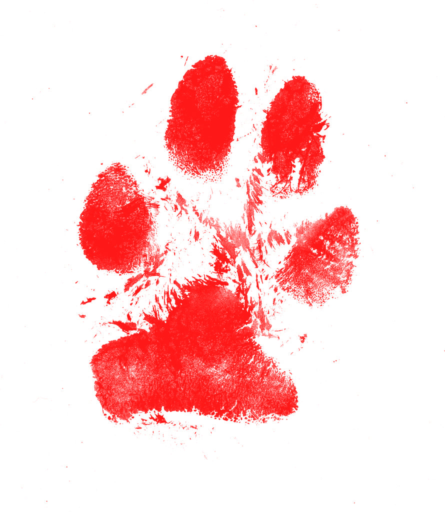 RED Paw Print Pad
