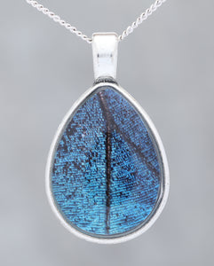 Blue Morpho  - Glow-in-the-dark pendant with an image of a Butterfly's wing set in a blue stone-like bezel