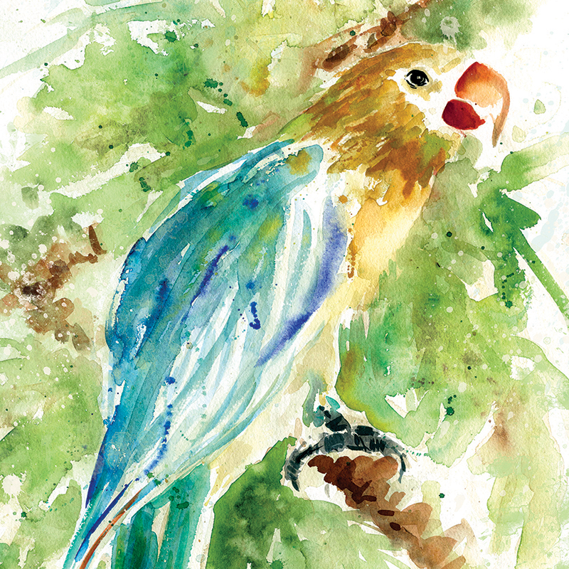 watercolor parrot 01