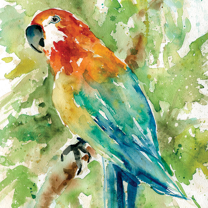 watercolor parrot 02