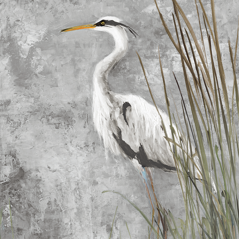 royal heron 02 ~ grey