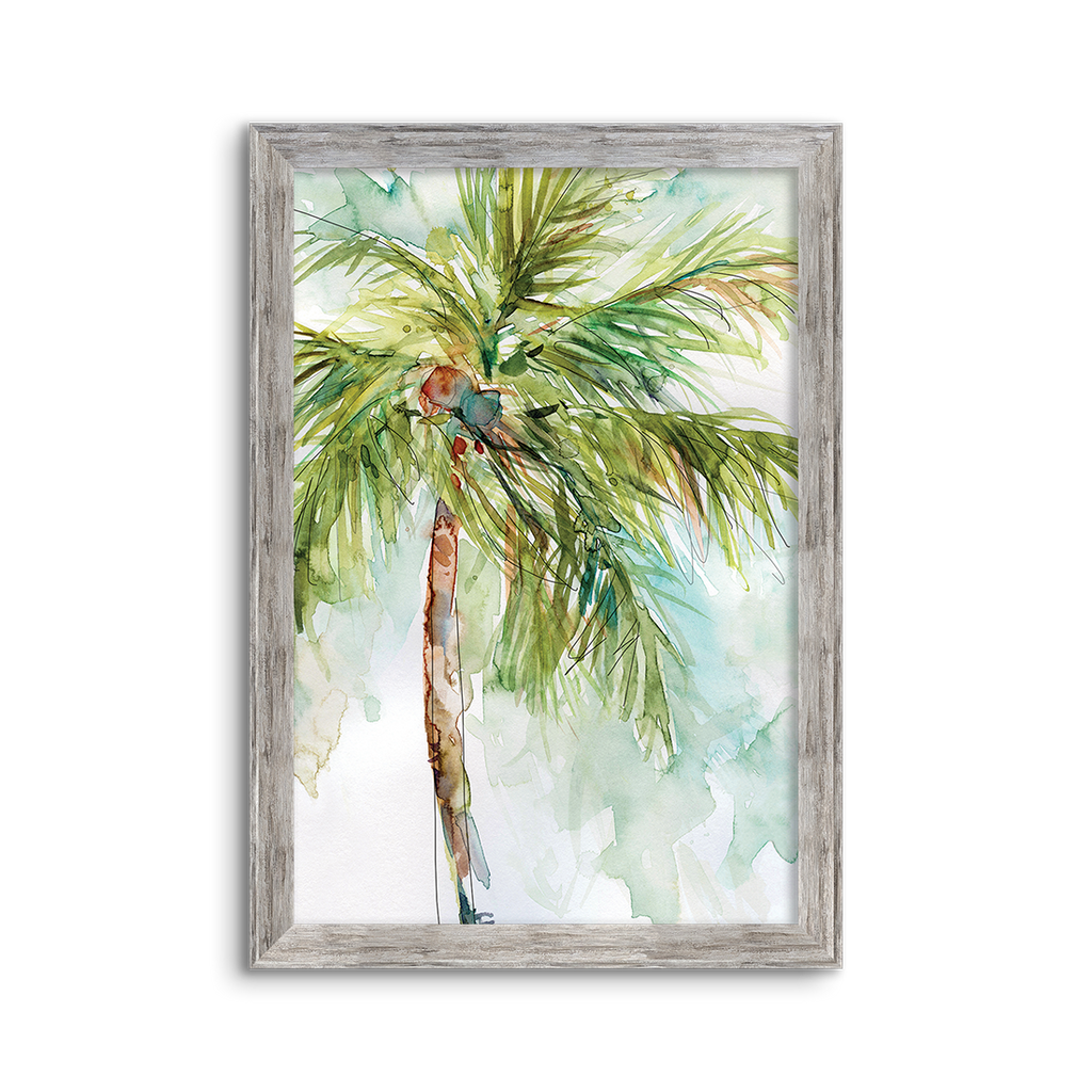 coconut palm 01