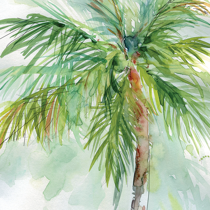 coconut palm 02