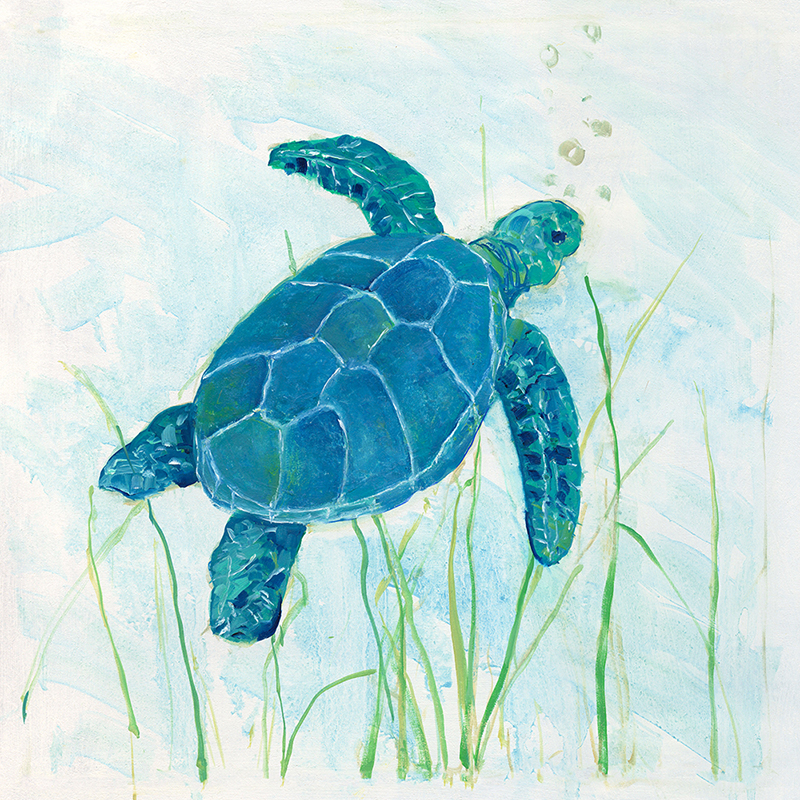 seagrass turtle 01