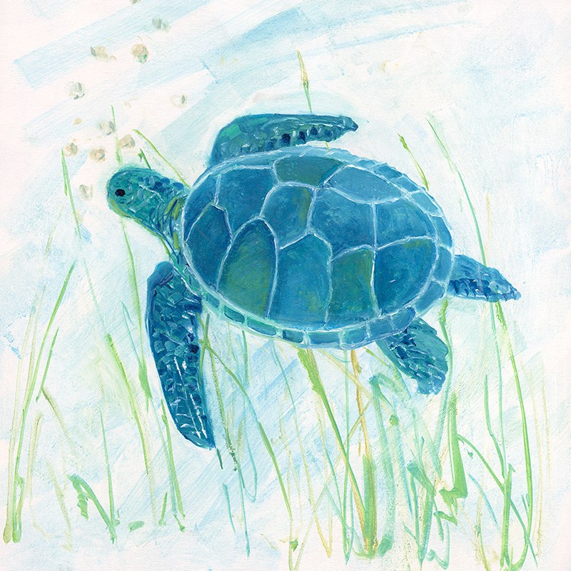 seagrass turtle 02