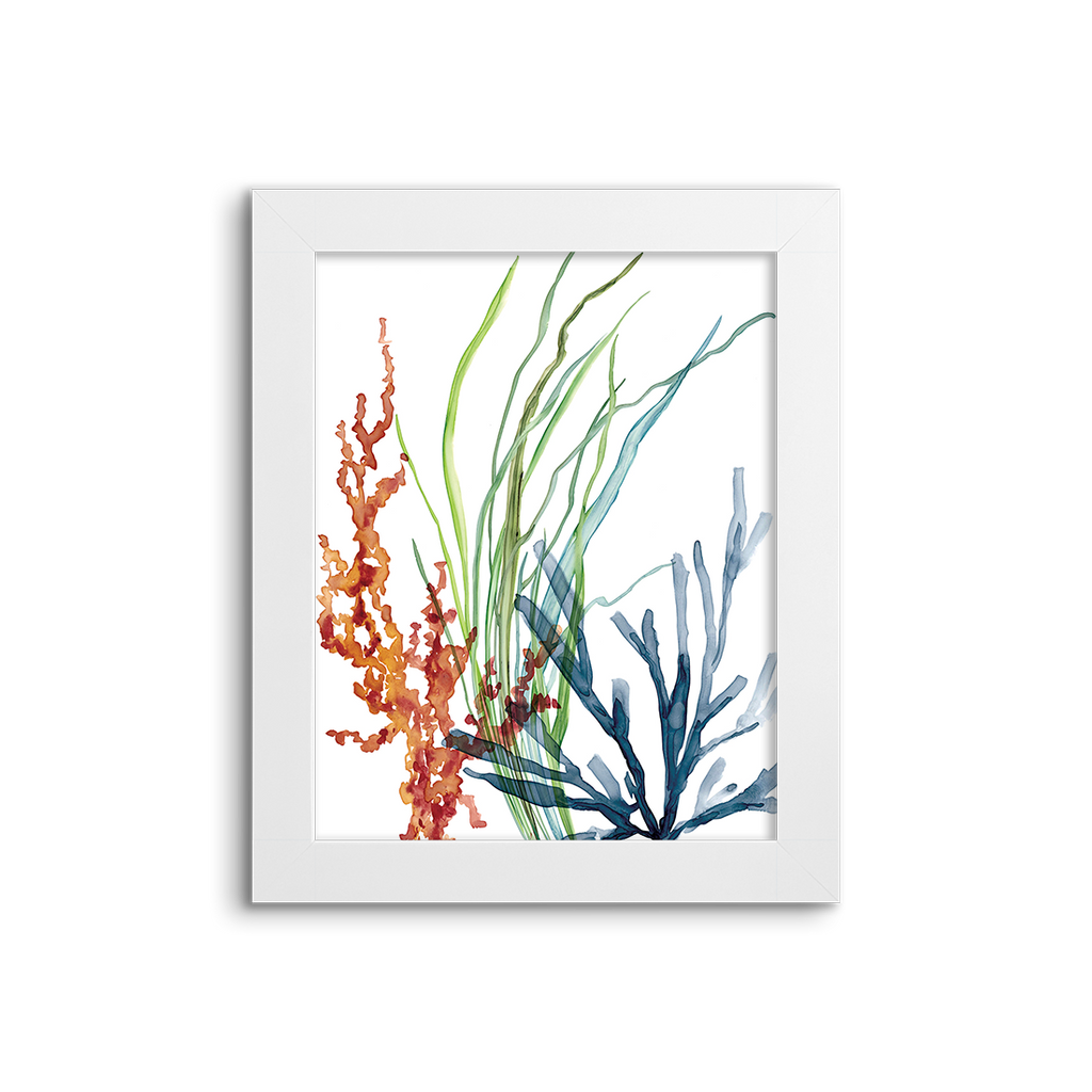 colorful corals 01