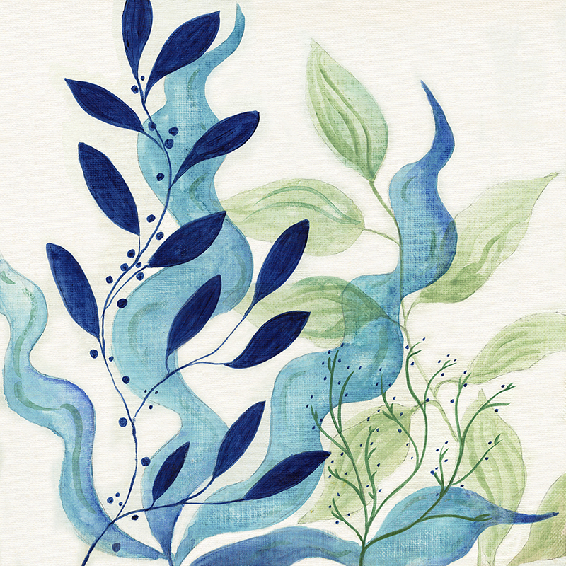 watercolor kelp 01