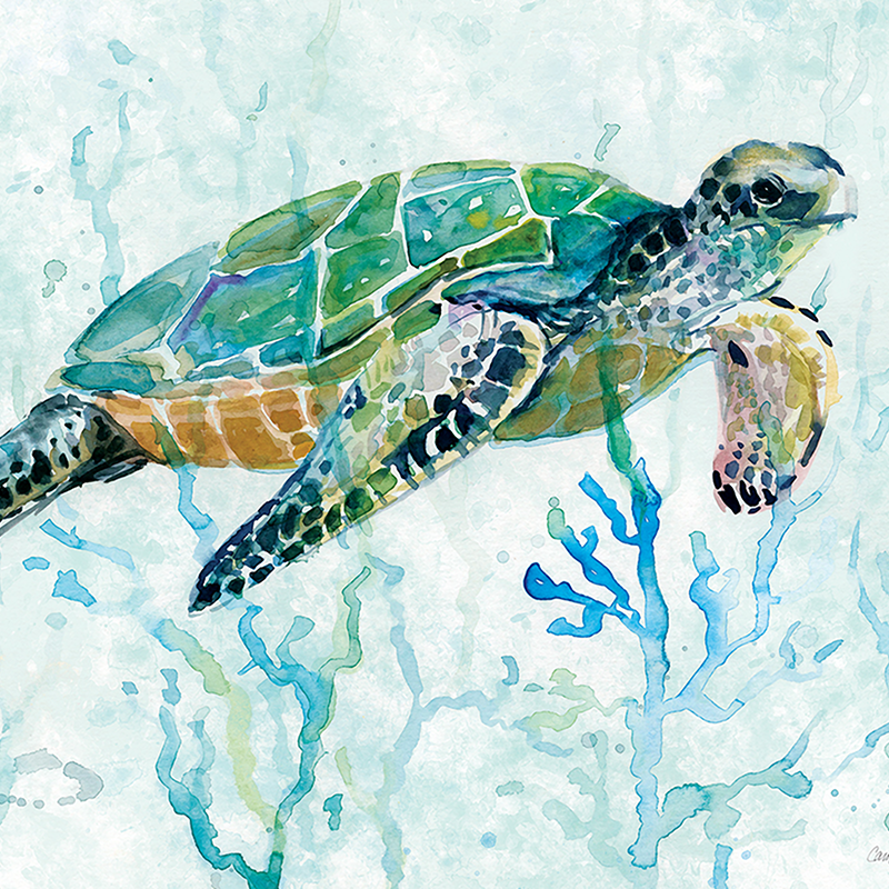 sea turtle in green 01