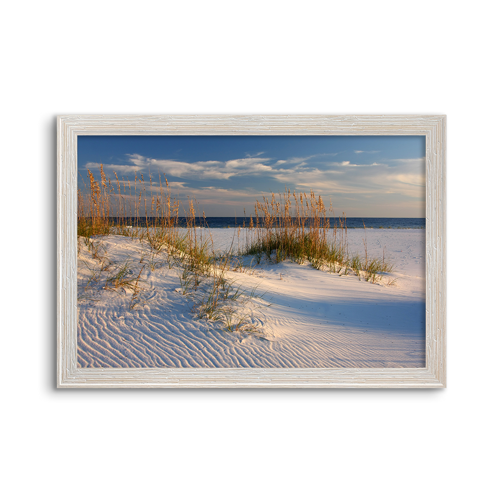 white sand sea oats