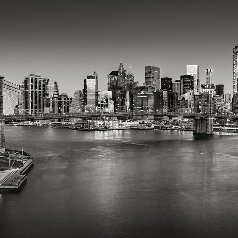 cityscape new york ~ brooklyn bridge skyline