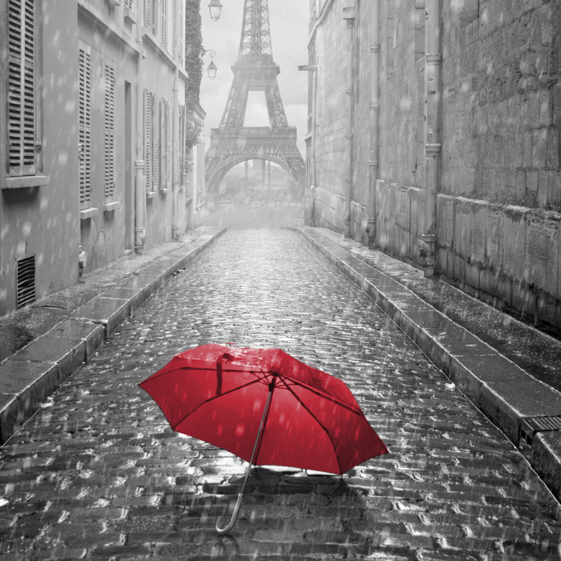 cityscape grey & red ~ eiffel tower ~ paris