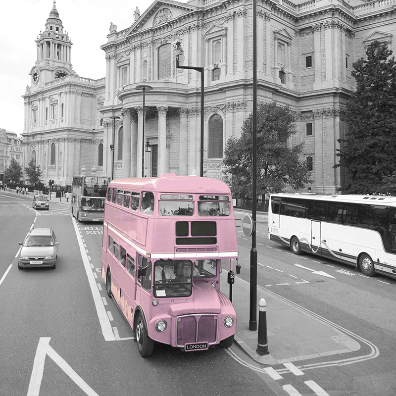 cityscape grey & pink ~ st. paul's ~ london