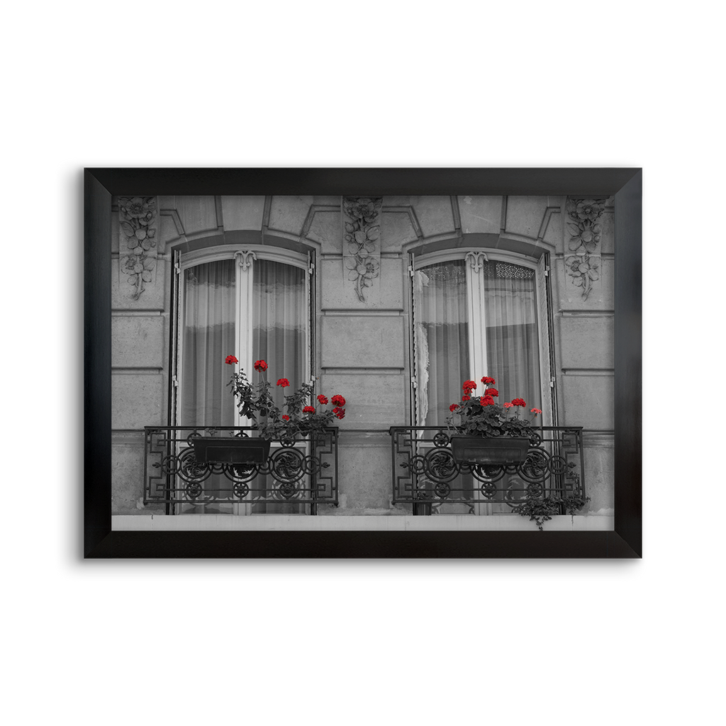 windows with red flowers