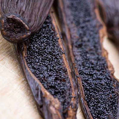 Vanilla pods used to make essential oils for Cierge de Lune copycat fragrances by Match Perfumes