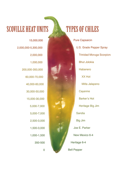 Scoville Scale on a Hatch Chile Pod