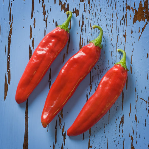 Fresh Red Chile