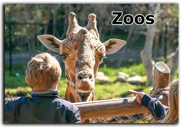 view-master® zoos