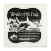 ViewMaster - Wonders on the Deep - Vintage Classic 3 Reel Packet - 1960s Views - B612