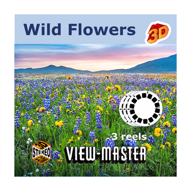 View-Master Wildflowers  - Vintage - 1950s views