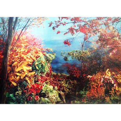 Autumn in the Forest - 3D Lenticular Poster - 12 X 16