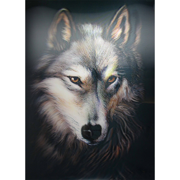Wolf Face - Close Up & Personal - 3D Lenticular Poster - 12x16 Print
