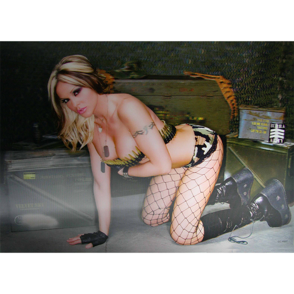 Hot Sexy Military Girl - 3D Lenticular Poster - 12x16 Print