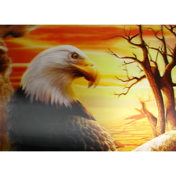 Eagle with a Sunset as background - 3D Lenticular Poster - 12x16 Print