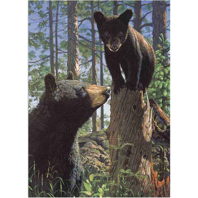 Mother bear and cub   - 3D Lenticular Poster - 12x16 Print