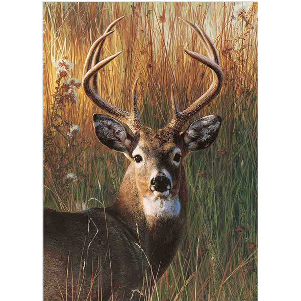 Red Deer in Forest  - 3D Lenticular Poster - 12x16 Print