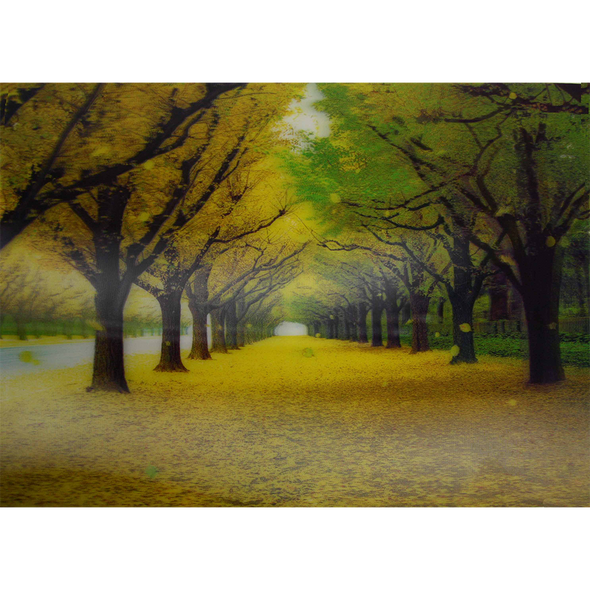 Tree Alley with Falling Leaves - 3D Lenticular Poster - 10 X 14