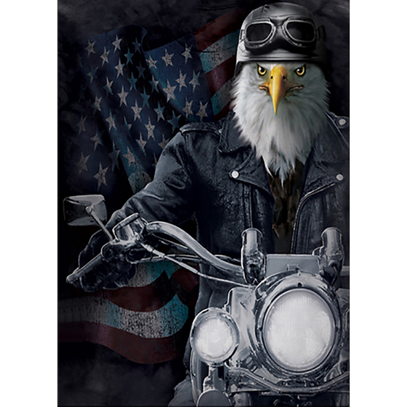 Patriotic Eagle on Bike - 3D Lenticular Poster - 12x16 Print