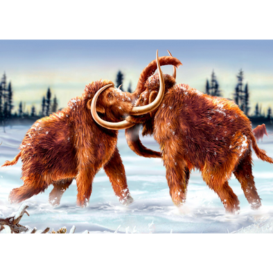 Mammoths Fighting - 3D Lenticular Postcard Greeting Card