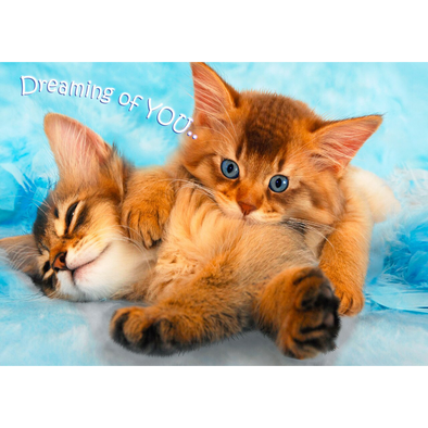Dreaming of You - 3D Action Lenticular Postcard Greeting Card