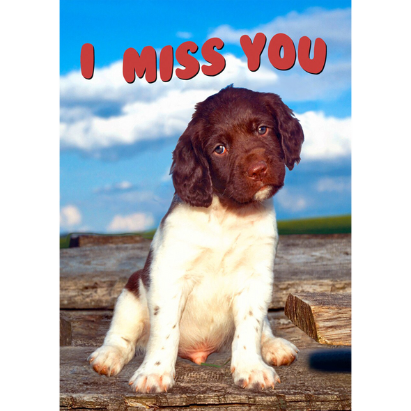 I Miss You - 3D Action Lenticular Postcard Greeting Card