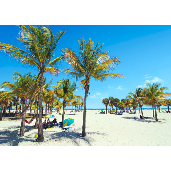 Palm and Sand - Beach Scene - 3D Lenticular Postcard Greeting Card