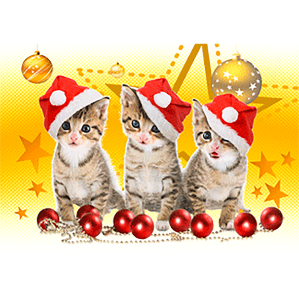 Christmas Kittens - 3D Action Lenticular Postcard Greeting Card
