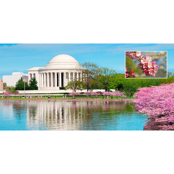 Jefferson Memorial Washington, D.C.- 3D Lenticular Postcard Greeting Card - Oversize