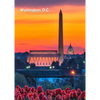 Washington Monument by Day and Night - 3D Lenticular Postcard Greeting Card