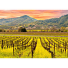 Napa Valley, California - 3D Action Lenticular Postcard Greeting Card