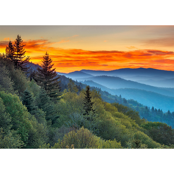 Appalachian Mountains - 3D Action Lenticular Postcard Greeting Card