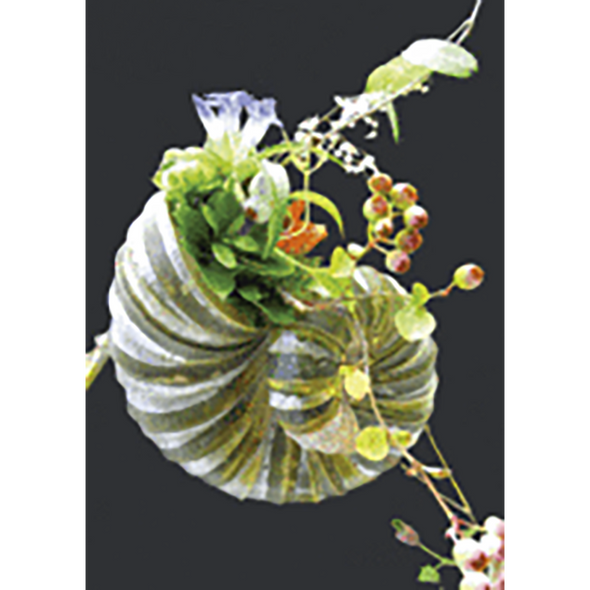 Shell with Flowers - 3D Lenticular Postcard Greeting Card