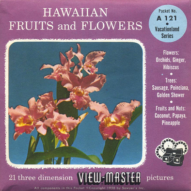 Hawaiian - Fruits and Flowers - Vacationland Series - A121 - Vintage Classic View-Master - 3 Reel Packet - 1960s Views