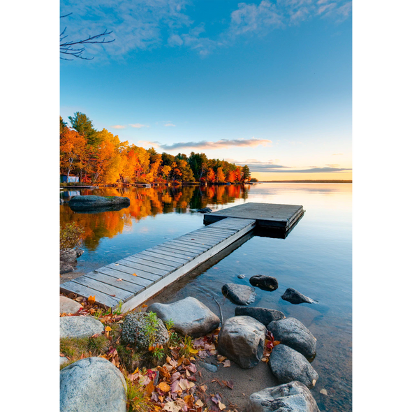 Fall At Baxter State Park, Maine - 3D Lenticular Postcard Greeting Card