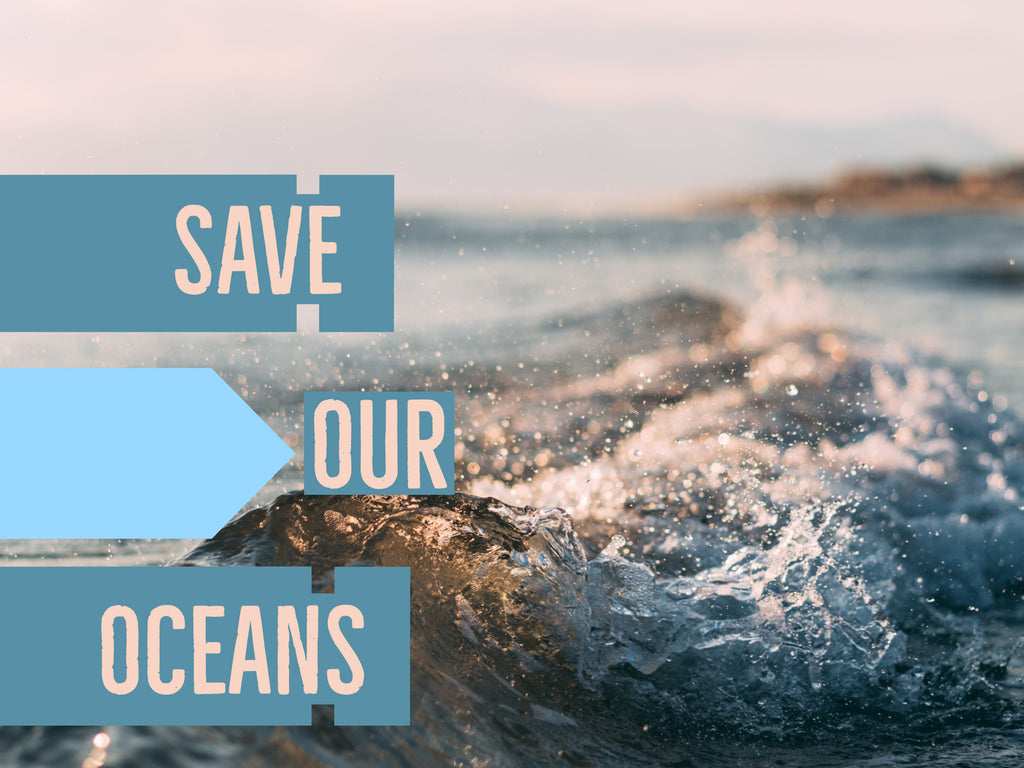 10 Ways YOU Can Save Our Oceans Today