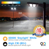 LED Area Light Fixture 100W