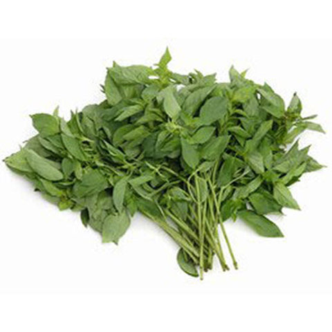 Thai Basil (Sweet)